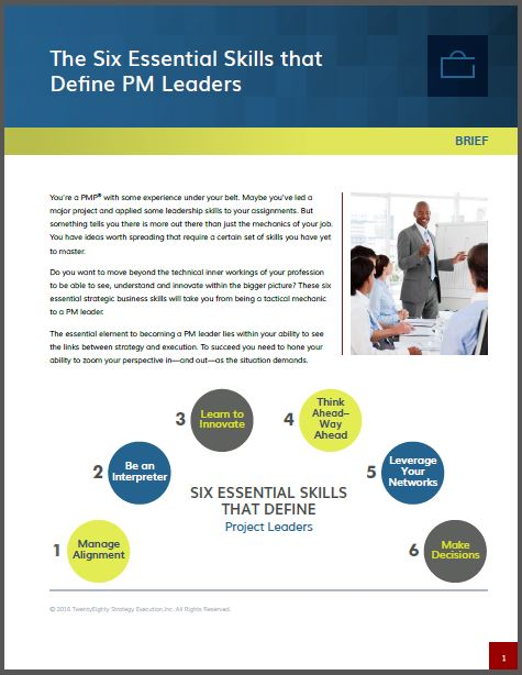 Le 6 Skills del buon Project Leader
