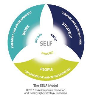 The Adaptive Leader: il Mindset per gestire le complessità